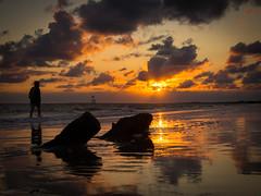 """""""Poussinet"""" au couché du soleil (eric_marchand_35) Tags: charentemaritime saintpalaissurmer sable ocean see mer atlantique estuairedelagironde couchédesoleil sunset sun dogwood52 dogwood2017 dogwood2017week28 mft olympus omd em10ii color backlight silhouette"""