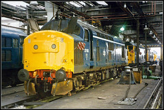 37193, Thornaby TMD (Jason 87030) Tags: shed tees yard depot tmd britishrail tractor growler br blue 37193 visit coach party trip arranged 1985 past august railway diesel locomotive engibe brblue bash uk england transport inside interior history