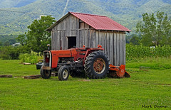 Townsend Tennessee (mark owens2009) Tags: masseyferguson tractor mower 282 mountain green grass smokeymountains cribb tires wheels shack roof trees lights