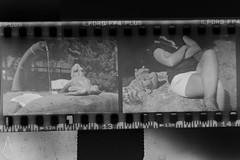 14 (andrea.fogliacco) Tags: giallo film pellicola ilford fp4 plus sviluppo rullini vintage black white develop developed reflex old school vecchia scuola