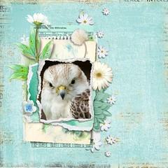 Flora and Fauna (tina777) Tags: scrapbooking page serif craft artist digikit flower bird