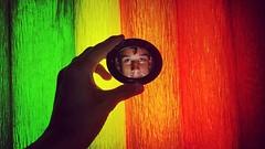 Cor 2/4 (maurovictor) Tags: eu photograph sériefotografica brasil amador lg celular foto cor alegre vibrante color happy criativo espelho diferente ideia felicidade expontaniedade boy menino homem men br cool friend