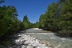 sDSC_3808 (L.Karnas) Tags: slowenien slovenia slovenija sommer summer juli july 2017 gozd martuljek kranjska gora