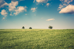 Meadow-1 (Pásztohy) Tags: nature ruralscene meadow field sky grass summer outdoors landscape tree land sunlight pasture blue greencolor nonurbanscene cloudsky season minimal hill transylvania three pentacon 30mm f35 horizon simplicity minimalism