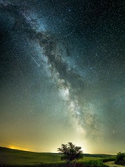 Under the galaxy (BalintL) Tags: star stars tree milky way sky outdoor night dark light polution magyaregres silhouette countryside field fujifilm xe1 samyang 21mm f14 wideopen pano panorama ngc