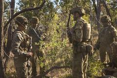 Marines Coordinate Amphibious Tactics with Australian Army (#PACOM) Tags: ussgreenbay usnavy usmarines sailors marines 7thfleet amphib7flt amphib pacific ctf76 talismansaber2017 31stmeu australia au
