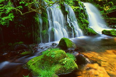 Former waterfall undercurrent water (chikaraamano) Tags: waterfall phantom valley stream moss green spectacle water gap coolsound summer mysteriousandsoft immediateness flowsthrough barerock flowingundercurrent outdoormountain dropssolemnly charmed purified greatly naturalwarmth