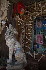 THE WOLF LIKES BUD (akahawkeyefan) Tags: carving wood sculpture wolf saloon window antlers douglas wyoming davemeyer