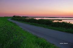 Twilight on the road (stefano.chiarato) Tags: crepuscolo twilight tramonto sunset road strada rosolinamare valli di pesca sera veneto mare italy