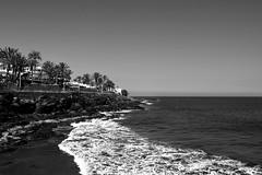holiday gran canaria 097b&Wfi2 (sheralee-cooper) Tags: landscape photography black white gran canaria holiday camera beach sea wave palm tree