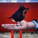 Street Art on Robertson - Beverly Hills, California