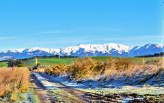 Postcard from New Zealand (Gadgetman@Nikon) Tags: elements