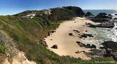 North Burgess Beach, Forster, NSW (Black Diamond Images) Tags: burgessbeach forster greatlakesnsw nsw midnorthcoast greatlakes australianbeaches beach beachlandscapes landscape coast iphone appleiphone7plus iphone7plus panorama appleiphone7pluspanorama iphone7pluspanorama iphonepanorama