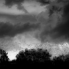 Cloud Reflections 007 (noahbw) Tags: captaindanielwrightwoods d5000 nikon abstract blackwhite blackandwhite bw clouds cloudy forest landscape light monochrome noahbw pond reflection sky square storm stormy summer trees water weather woods