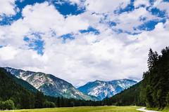 (der-kruemel) Tags: 1835 1835mm 70d achensee baum berge canon canoneos70d eos flora gramaialm himmel sigma sigma1835mm sigma1835mmf18 sigma1835mmf18dchsm sky wald weg wolken forest wood tirol österreich