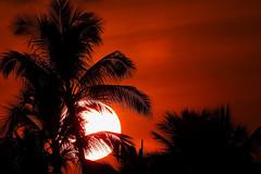 Kailua - White Heat (Drriss & Marrionn) Tags: bigisland hawaii usa outdoor coast seaside kailuakona travel waterfront vulcanicisland tropical tropicalisland sunset nightshot eveninglight sky nightsky clouds black red palmtrees palmtreesilhouettes