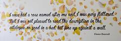 Cheeky (Simon Caunt) Tags: nikond800 nikoncameras d800 240700mmf28nikkor afsnikkor2470mmf28  hamptoncourt rhs flowershow london eleanor roosevelt eleanorroosevelt cheeky smutty wellisay oohmatron quote quotation