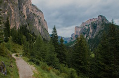 Mountain Valley (bjorbrei) Tags: path pathway trail mountain forest vallunga selva valgardena gherdëina gröden wolkenstein tyrol tirol tirolo dolomites dolomiten dolomiti italiy italia spruces valley mountains