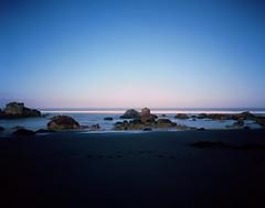 Bodega Bay Rocks with a touch of white bird. (preston e davis) Tags: sinarnorma 4x5 ektar100 epsonv700 bigstopper longexposure california bodegabay ocean