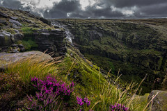 downfall (Phil-Gregory) Tags: kinderscout peakdistrict nikon d7200 tokina 1120mm 1120mmf28 1120mmproatx 1120 wideangle ultrawide wild wide national nature nationalpark naturalphotography naturalworld natural naturephotography scenicsnotjustlandscapes landscapes downfall kinderdownfall heather purple water