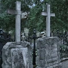 graves (fredriksvensson73) Tags: gothic