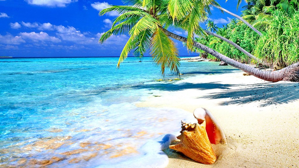 Gambar Pemandangan Alam Pantai  Andrea Febrian Marcel Tags Gambar Pantai