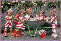 Ein schöner Tag geht zu Ende ... (Kindergartenkinder) Tags: seppenrade sanrike tivi rosengarten blumen personen kindergartenkinder garten blume park frühling annette himstedt dolls milina annemoni jinka