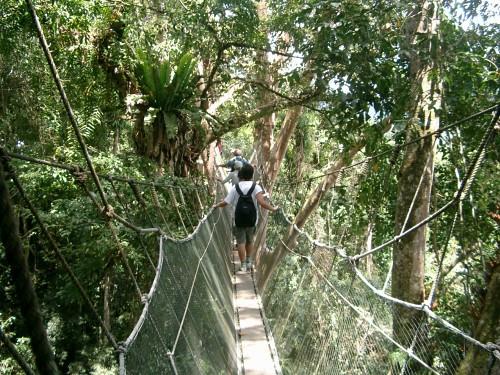 世界遺産キナバル公園・先住民の村とポーリン温泉(世界遺産のオプショナルツアー)