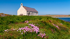 Church... In bloom... (L A H Photography) Tags: church cwyfanchurch flowers grass architecture sky blue pink landscape landscapephotography nikon nikond300 pov serene tranquil beauty love outdoor sea coast