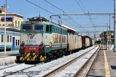 E655 291 Caimano (luciano.deruvo) Tags: e655291 caimano treno merci fs rfi ferroviedellostato e655