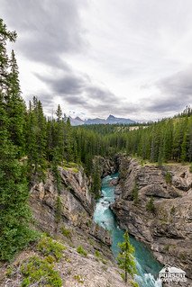 Hiking Siffleur Falls