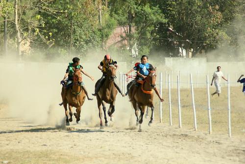 Horse race in Waingapu