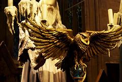 Photo of Dumbledore
