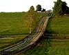 farm lane (johncarey/) Tags: farm fences kentucky bluegrass horsefarm