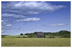 La petite maison dans la prairie (Siolas Photography) Tags: isleauxcoudres québec mpdquebec ciel colors sky paysage oldhouse outside agriculture harvest blé charlevoix
