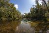 Lanca Scaron (William Tagliaferri) Tags: ticino river lanca reflection water tree sunlight beatiful