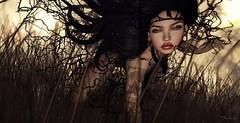 Wild ... (ShaNaela) Tags: second life event we3 role play pose catwa tattoo tatou makeup secret affair