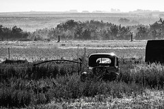 Abandoned in the Sun (Jae at Wits End) Tags: view mechanical color machine old truck rural vehicle picturesque abandoned grey motor objects blackandwhite decayed bw rejected field neglected natural decay discarded nature blackwhite forgotten monochrome gray mechanism country black transportation scenic landscape forsaken white
