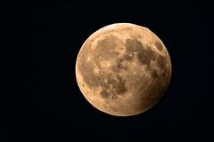 Ende der partiellen Mondfinsternis / End of partial lunar eclipse 07.08.2017 (Andrelo2014) Tags: partiellen mondfinsternis partial lunar eclipse moon mond astro himmel sky tamron sony a77ii 600mm vollmond fullmoon