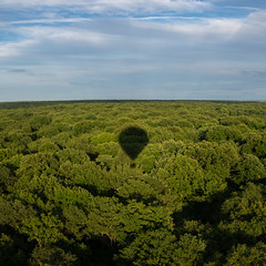 Balloon (The William D) Tags: montgolfière balloon foret amboise france forest vol fly loire