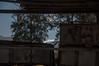 DSC_0013 (tamarshaki90) Tags: חלונות חרמון פוסטר שלג