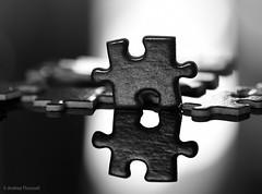 31 Piece (manxmaid2000) Tags: piece jigsaw puzzle reflection pieces monochrome contrast game black white upright mono macro shape interlocking tessellating together interlock light balance blackandwhite tiling tile tessellate