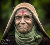 DSC_2710-2 (@sumitdhuper) Tags: wallshare portrait face beauty village look smile expression old lady age wrinkles