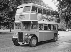 Crossley in the park (DH73.) Tags: northampton corporation transport nct nt abington park bus crossley dd42 preserved heritageopendays 146 vv9146 roe double decker psv black white film ilford fp4 200asa fomadon r09 125 13mins 68°f minolta 7000af 3570mm zoom lens f4 macro