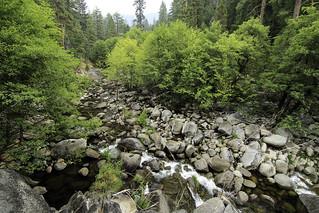 Clover Creek