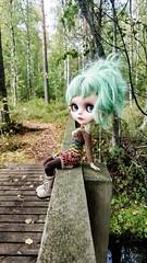 ❤🍁🍂🌻🌲🍃💙 At the forest with Minttu . #blythe #customblythe #doll #customdoll #crochet #crochetdollclothes #dollclothes