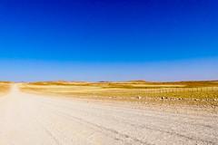 P1020881 (Seb_Jan) Tags: namibie namibia afrique africa afrika summer 2017 road trip roadtrip travel adventure holiday nature explore lumix wildlife safari picoftheday photooftheday dune desert naukluft