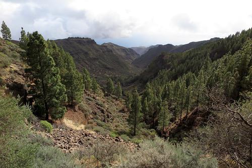 Gran Canaria_243