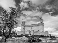 Manzanares El Real castle (Ignacio Ferre) Tags: madrid españa spain manzanareselreal castillo castle lumix panasonic landscape paisaje blackwhite blancoynegro monocromo monocromático monochrome bn bw
