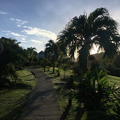 Path at Cocobay Resort, Antigua